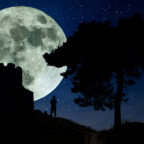 Dreamer  by Davor Strenja - Landscapes Starscapes ( dreaming, moon, stars, blue., croatia, night, nin, man )