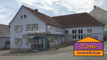 maison à Oermingen (67)
