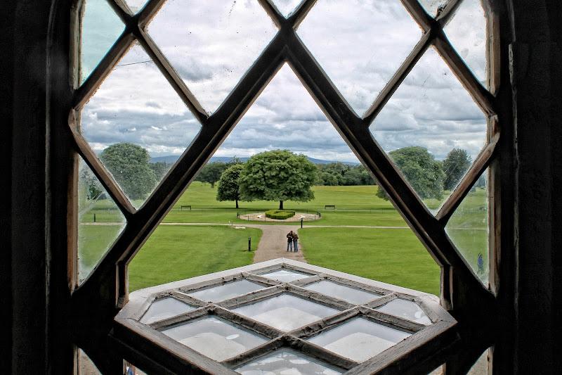 La finestra sul giardino di GVatterioni