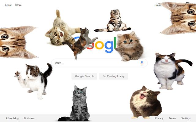 Cats App!