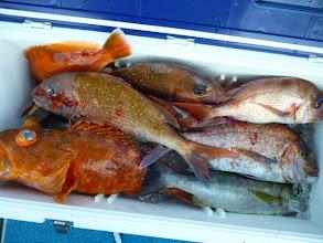 Photo: 釣果発表です!佐賀のイノウエさんの釣果です。後半、全くでしたネ。