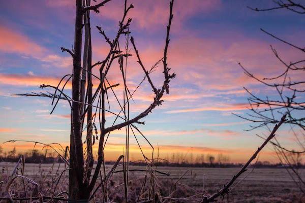 I colori dell'alba di StePh