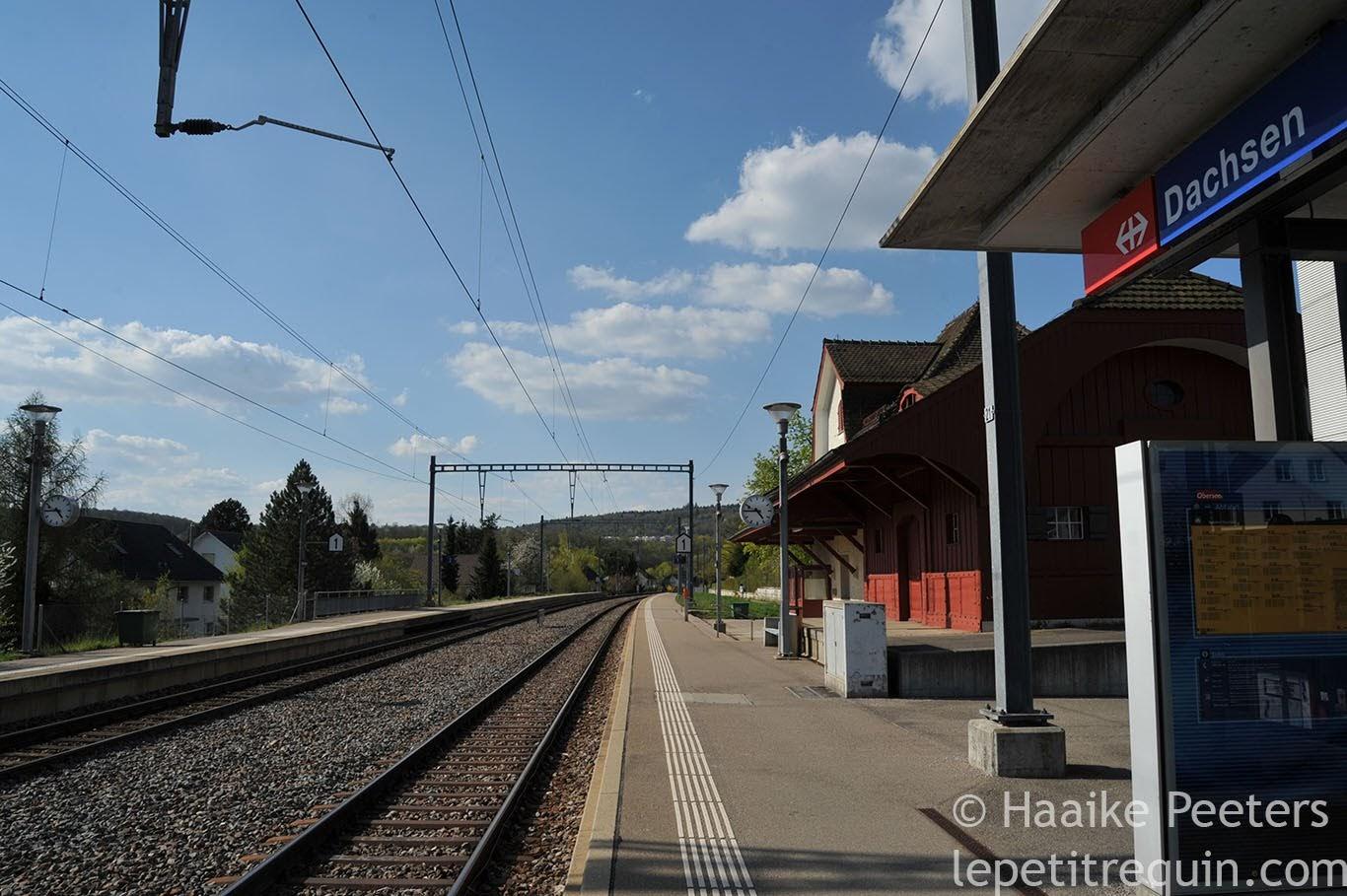 Bahnhof Dachsen (Le petit requin)