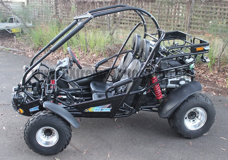 300cc XRX Trailmaster Twister Hammerhead GoKart Dune Buggy Side View