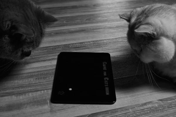 Il cat-tablet! di DellaBrù