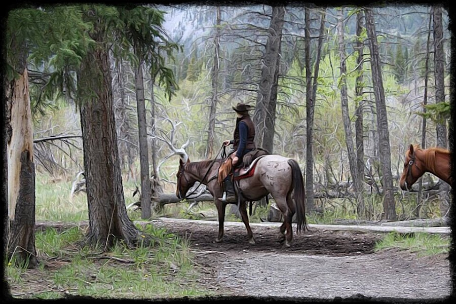 Alberta cowboys at Banff, Canada by Pam Blackstone - Illustration People ( horses, cowboys, trees,  )