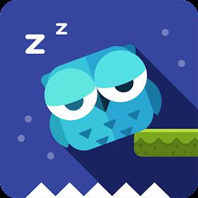Owl Can't Sleep!