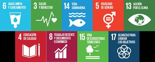 Medio ambiente y responsabilidad social (sostenibilidad)