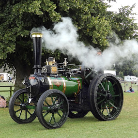 Victoria by Cliff Oakley - Transportation Other ( history, industrial, haulage, industry, machine, restored, steam )