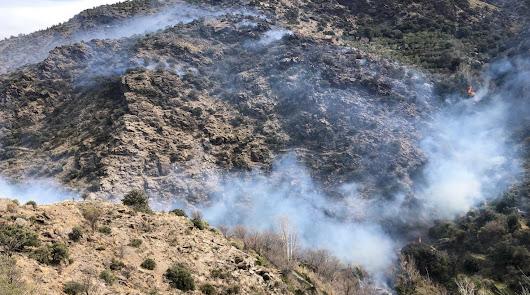 Medio centenar de bomberos trabajan en el incendio del Barranco de Lotrines