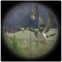 Jungle Birds Sniper Hunting icon