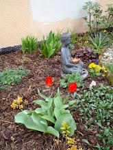 Photo: zahrádka už kvete - already blooming garden