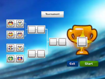 Soccer Birds Strike - The Angry Sport Tournament