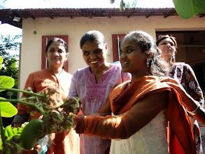 Photo: Trinayani Picnic