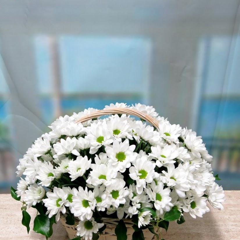 Qué flores regalar según la personalidad