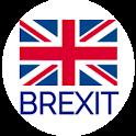 EU Exit: Your Options icon