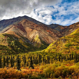 Rainbow Mountains  by Patricia Phillips - Landscapes Mountains & Hills ( alaska mountains rainbow autumn )