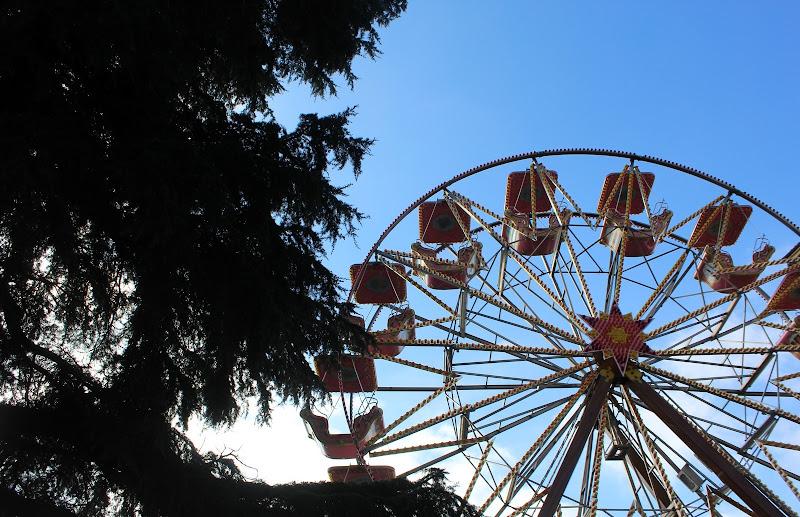Carousel di lamarvu
