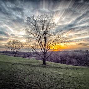 Stroud Sunset 2 by Jim Salvas - Landscapes Sunsets & Sunrises ( field, clouds, tree, time exposure, sunset, horizon, trees, rays )