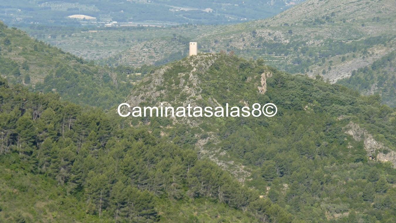 nuevo mujer azotar cerca de Castellón de la Plana