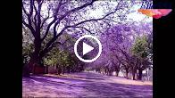 Xa Em Kỷ Niệm – Tân Cổ – Nhạc Beat