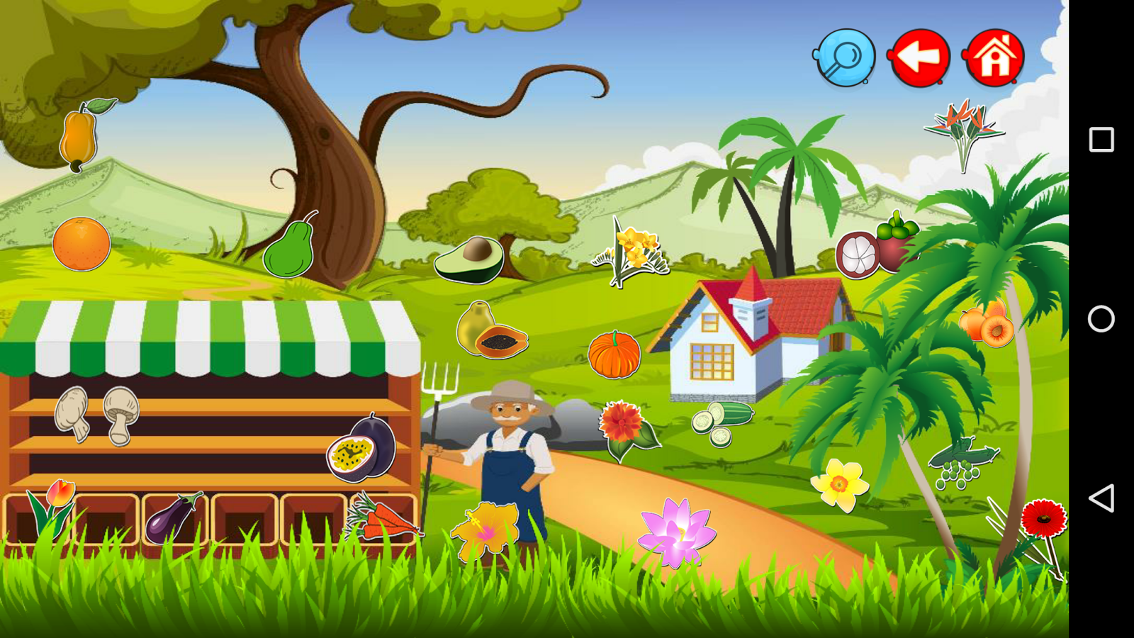 Vegetable, Fruits and Flowers- screenshot