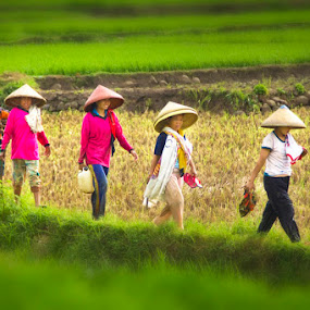 Women Farmers by Victor Lin - People Group/Corporate