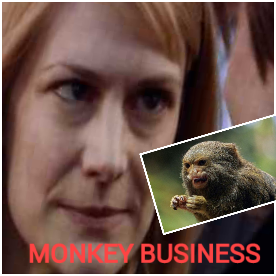 monkey business title.png