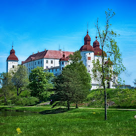 Castle 1600 by Tony Mortyr - Buildings & Architecture Public & Historical ( castle, historical, building )