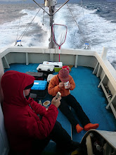 Photo: 終日、波が高く魚の活性も超低い一日でした!