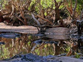 Photo: Day 5 -  Fergusson River © Ian Morris
