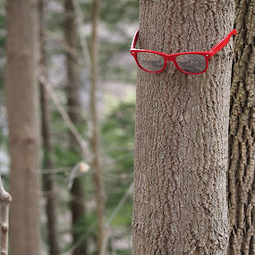 Hipster tree disappointed in his mainstream friends by Joe Spandrusyszyn - Artistic Objects Clothing & Accessories ( hipster, red, glasses, tree, forest, woods )