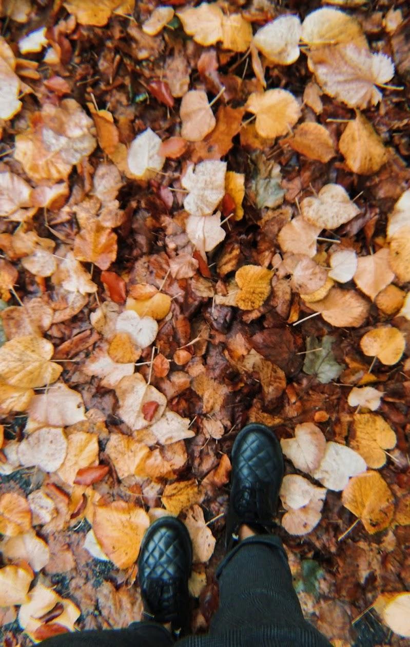 Leaves di ChiaBons