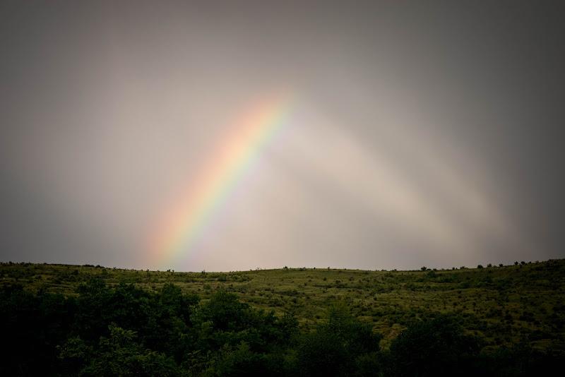 Le prime pennellate dell'arcobaleno di Bobp