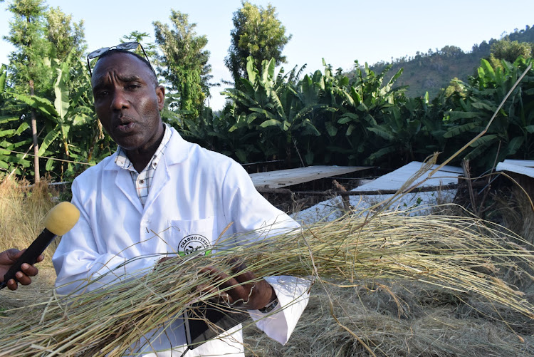 Association of Kenya Feeds Manufacturers secretary general Martin Kinoti he says that farmers have been complaining about the high cost of animal feeds in the country.