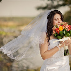 Wedding photographer Natalya Danilenko (natali-d). Photo of 22.01.2013