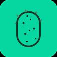 Cactus KLWP icon