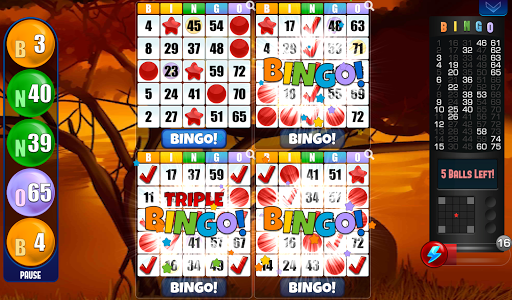 Bingo - Free Bingo Games download 1