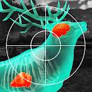 Wild Hunt:Sport Hunting Games. Hunter & Shooter 3D file APK Free for PC, smart TV Download