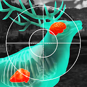 Wild Hunt: 3D Sport Hunting Games. Jagd-Simulator. icon