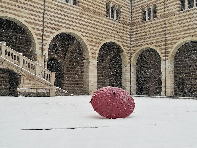 solo nella neve di elisabetta_de_carli