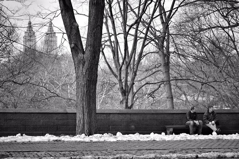 Inverno a Central Park di Eduz1966