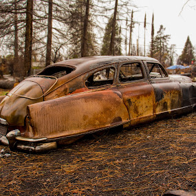 Laying low by Michael Mercer - Transportation Automobiles ( junkyard cars, rusty, classic cars )