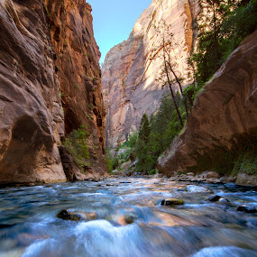 The Narrows by Glen Fortner - Landscapes Waterscapes ( utah, canyon, long exposure, zion, river )