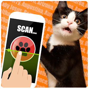 The real name cat scanner for PC and MAC