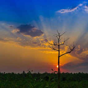 Hide & Seek by Rahul Chakraborty - Landscapes Sunsets & Sunrises ( , garyfonglandscapes, holiday photo contest, photocontest )