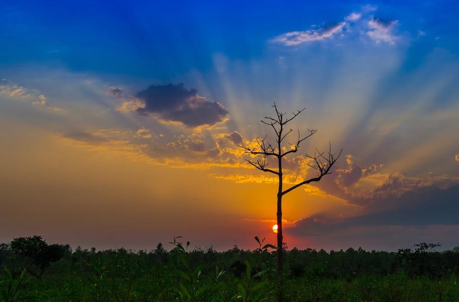 Hide & Seek by Rahul Chakraborty - Landscapes Sunsets & Sunrises ( , garyfonglandscapes, holiday photo contest, photocontest )
