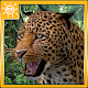 Leopard Attack Simulator (game)