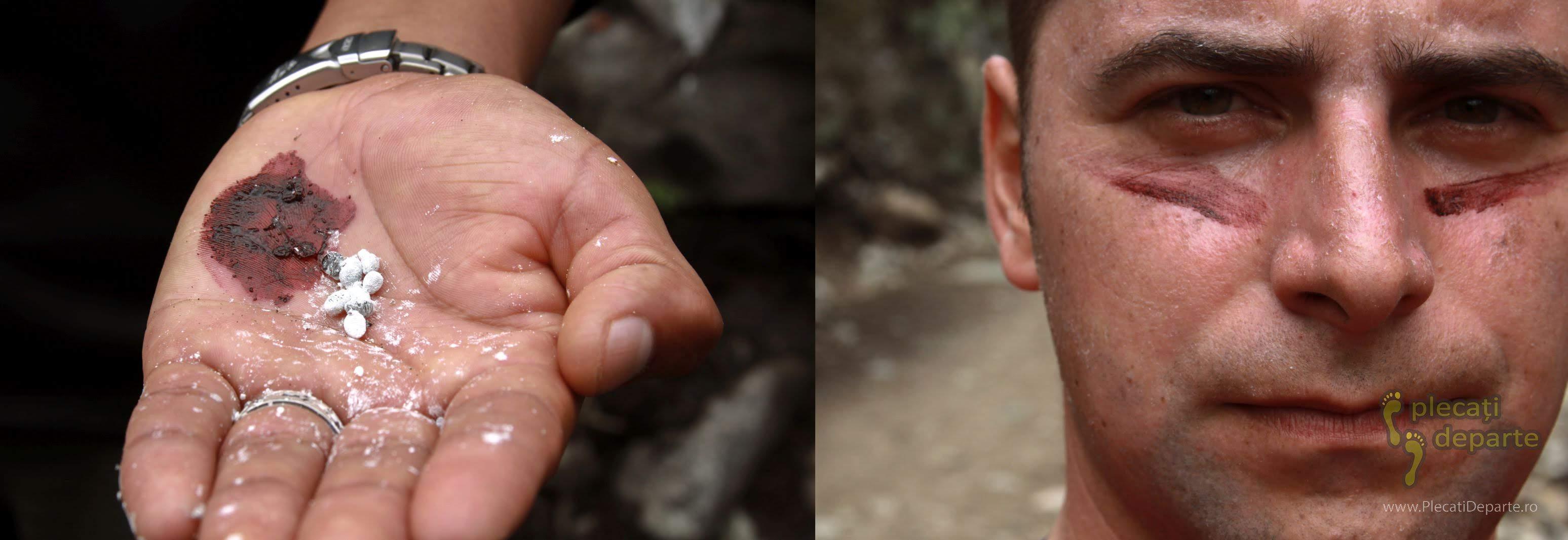 insecte Coccoideea strivite in palma pentru a obtine cosenila, o vopsea rosie, cu care m-am desenat pe fata
