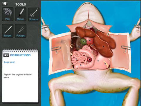 Virtual frog dissection: there's an app for that